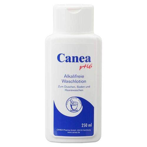 Canea-Pharma Canea pH6 alkalifreie Waschlotion