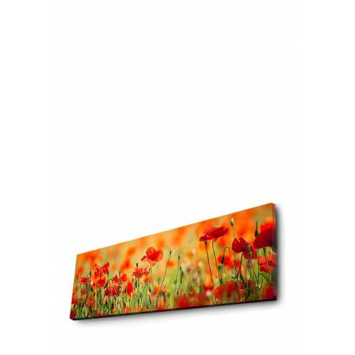 Wallity LED-Wandbild Wallity, B90 x H30 x T3 cm