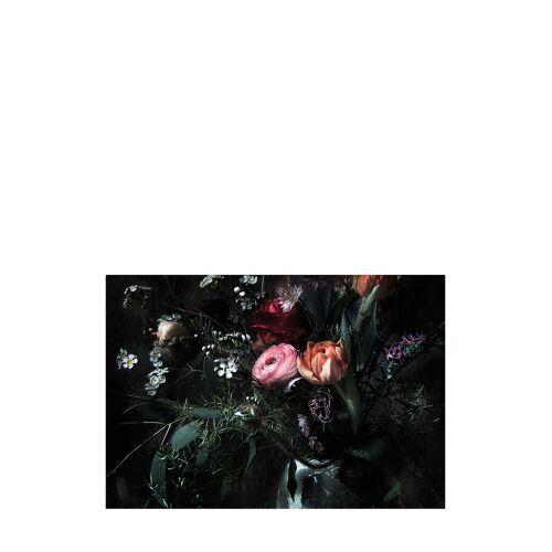 Komar Fototapete Still Life, B368 x H254 cm
