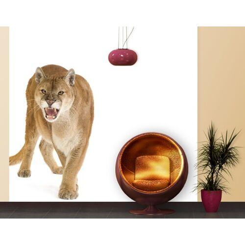 Bilderwelten DE Selbstklebende Tapete - Fototapete Puma