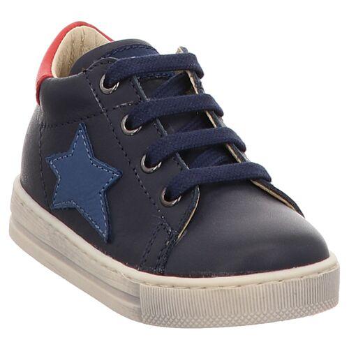 Naturino   Falcotto   Sasha   2015315   Lauflern Sneaker   Stern 23, blau