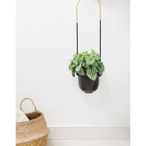 Umbra – Blumentopf zum Aufhängen in Schwarz und Gold-Mehrfarbig No Size
