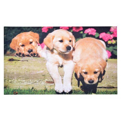 Esschert Design Gummi- Fussmatte Fussabtreter Hunde- Welpen 75x45cm