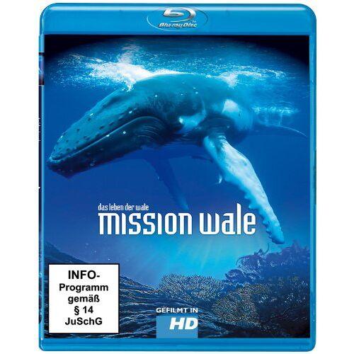 Jean Lemire - Mission Wale (Blu-ray) - Preis vom 11.06.2021 04:46:58 h