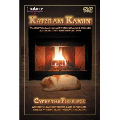 - Katze am Kamin - Preis vom 22.06.2021 04:48:15 h