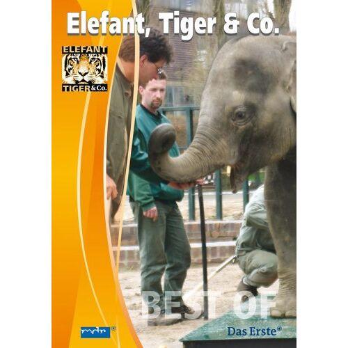 - Elefant, Tiger & Co., Teil 05 (Elefant) - Preis vom 23.09.2021 04:56:55 h