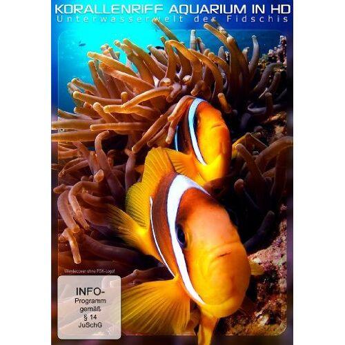 - Korallenriff Aquarium in HD - Die Unterwasserwelt der Fidschis - Preis vom 15.04.2021 04:51:42 h