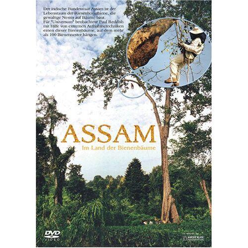 Paul Reddish - Assam - Im Land der Bienenbäume - Preis vom 24.01.2021 06:07:55 h