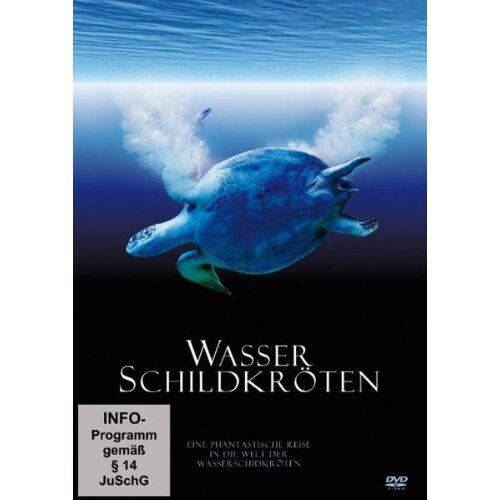 - Wasserschildkröten - Eine phantstische Reise in die Welt der Wasserschildkröten - Preis vom 20.01.2021 06:06:08 h