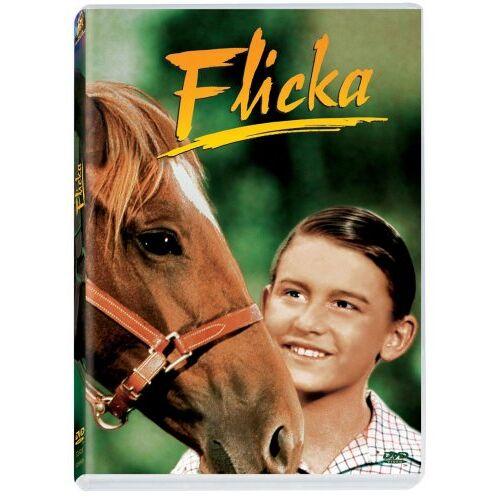 Harold D. Schuster - Flicka - Preis vom 03.05.2021 04:57:00 h