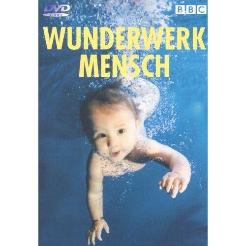 - Wunderwerk Mensch (4 DVDs) - Preis vom 20.01.2021 06:06:08 h