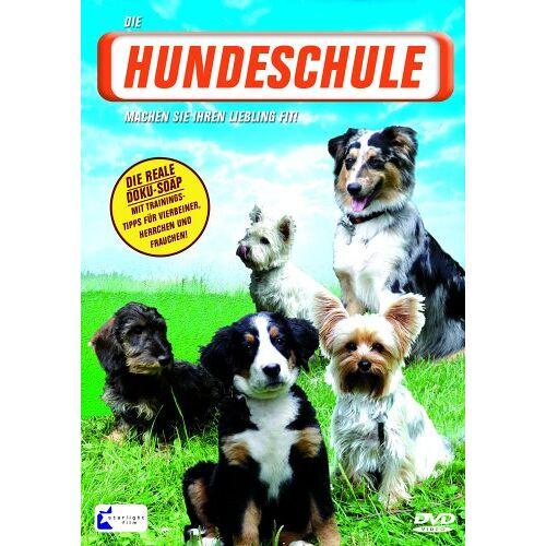 - Die Hundeschule - Preis vom 19.01.2021 06:03:31 h