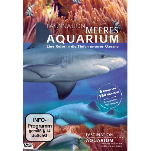 Simon Busch - Faszination Meeres Aquarium - Preis vom 23.02.2021 06:05:19 h