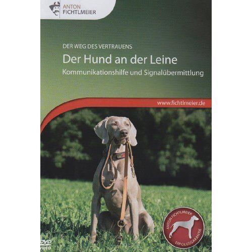 - Der Hund an der Leine - Preis vom 05.03.2021 05:56:49 h