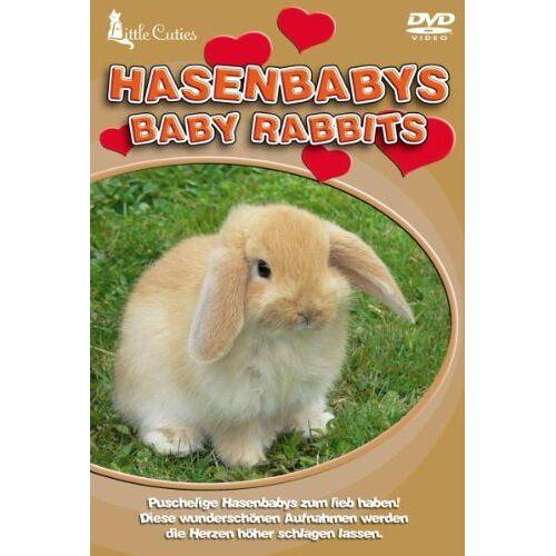 - Little Cuties - Hasenbabys - Preis vom 20.10.2020 04:55:35 h