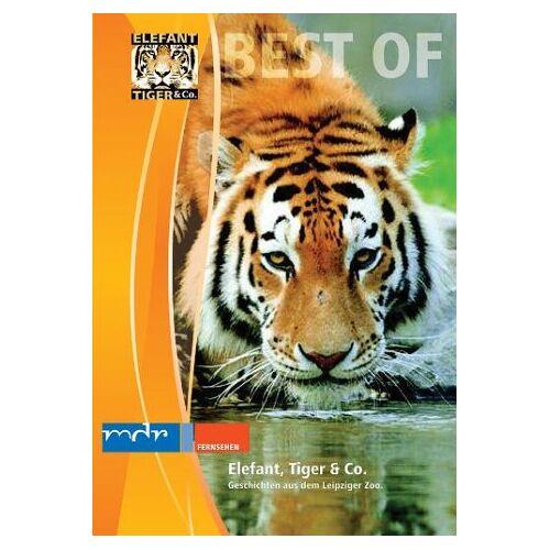 - Elefant, Tiger & Co., Teil 03 (Tiger) - Preis vom 12.05.2021 04:50:50 h