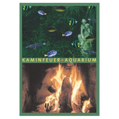 - Kaminfeuer + Aquarium - Preis vom 17.04.2021 04:51:59 h