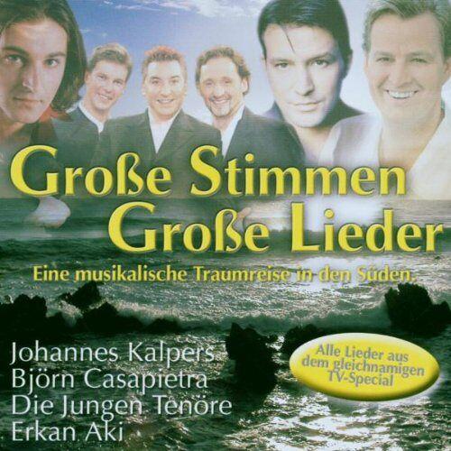 Various - Grosse Stimmen-Grosse Lieder - Preis vom 16.06.2021 04:47:02 h
