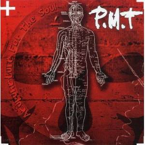 Pmt - Acupuncture for the Soul - Preis vom 06.06.2020 05:02:51 h