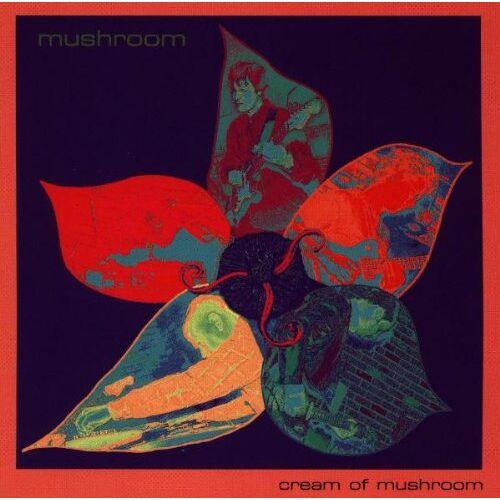 Mushroom - Cream of Mushroom - Preis vom 06.09.2020 04:54:28 h