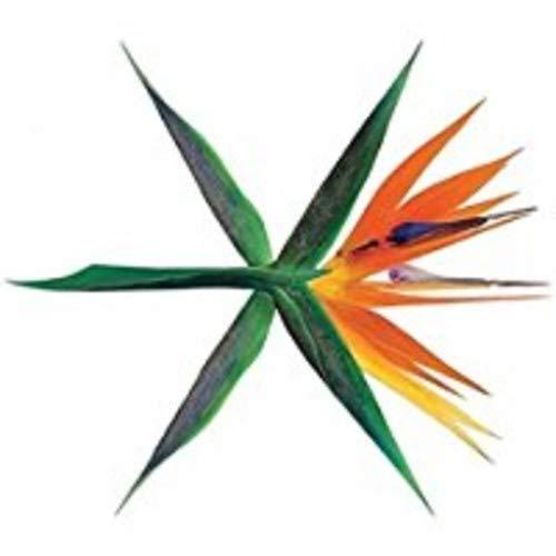 Exo - Vol.4 [the War] [Korean Versio - Preis vom 15.04.2021 04:51:42 h