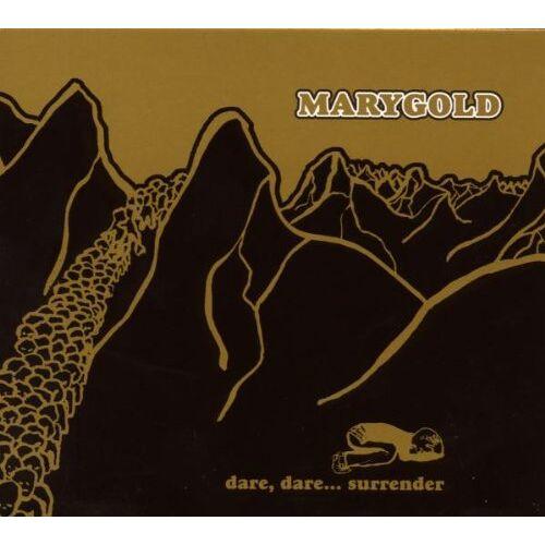 Marygold - Dare,Dare...Surrender - Preis vom 14.04.2021 04:53:30 h