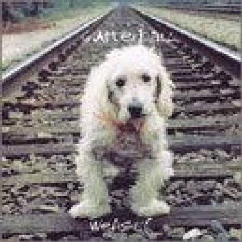 Gutterball - Weasel - Preis vom 03.05.2021 04:57:00 h
