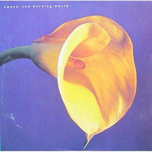 Swans - The Burning World [Vinyl LP] [Schallplatte] - Preis vom 25.02.2020 06:03:23 h