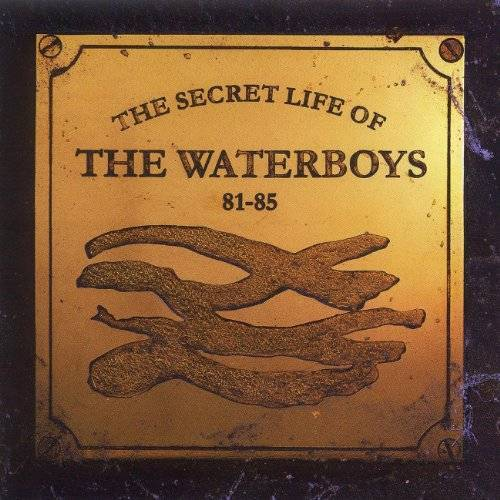 the Waterboys - Secret Life of the Waterboys - Preis vom 18.10.2020 04:52:00 h