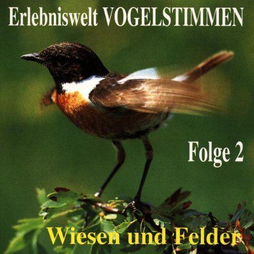 Vogelstimmen - Erlebniswelt Vogelstimmen Vol.2 - Preis vom 17.04.2021 04:51:59 h