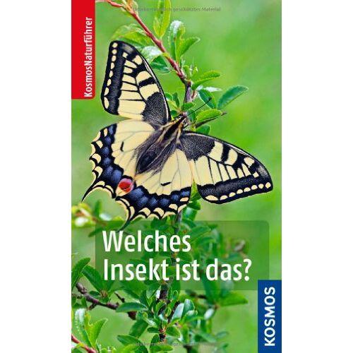 Heiko Bellmann - Welches Insekt ist das? - Preis vom 11.04.2021 04:47:53 h