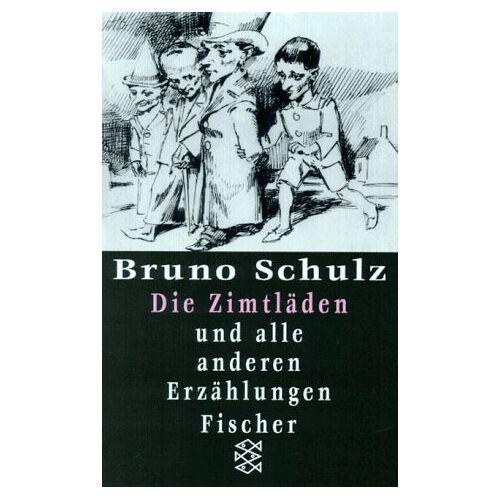 Bruno Schulz - Gesammelte Werke: Die Zimtläden und alle anderen Erzählungen.: BD 1 - Preis vom 27.07.2021 04:46:51 h