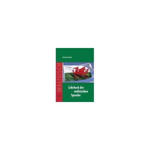 Britta Schulze-Thulin - Lehrbuch der walisischen Sprache - Preis vom 21.06.2021 04:48:19 h