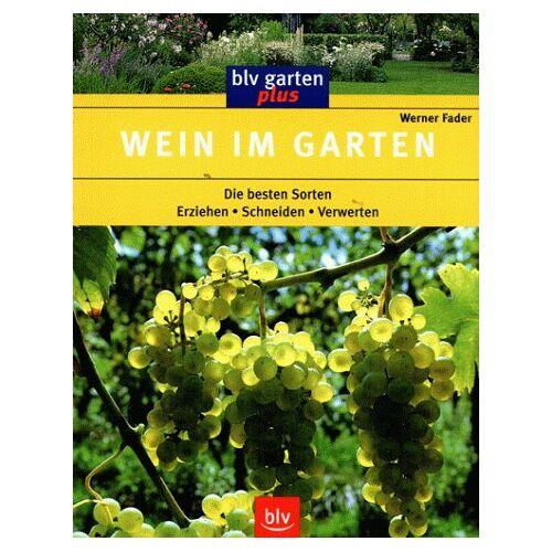 Werner Fader - Wein im Garten - Preis vom 11.06.2021 04:46:58 h