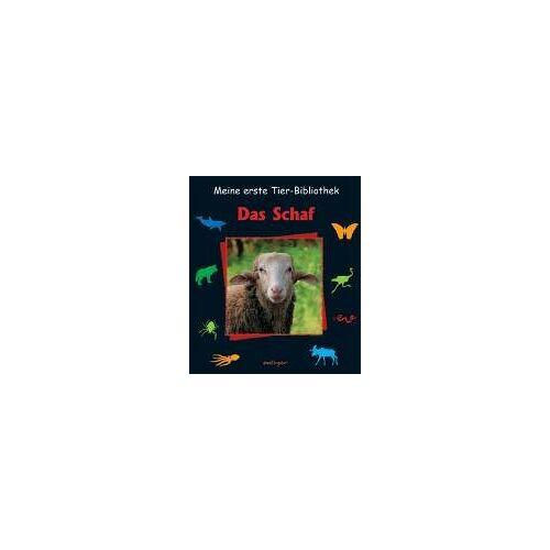 Emilie Dubois - Das Schaf - Preis vom 12.06.2021 04:48:00 h