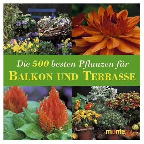 Andrea Rausch - Die 500 besten Pflanzen für Balkon und Terrasse: Kübelpflanzen, Rosen, Kletterpflanzen, Kräuter, Gemüse, Obst - Preis vom 22.07.2021 04:48:11 h