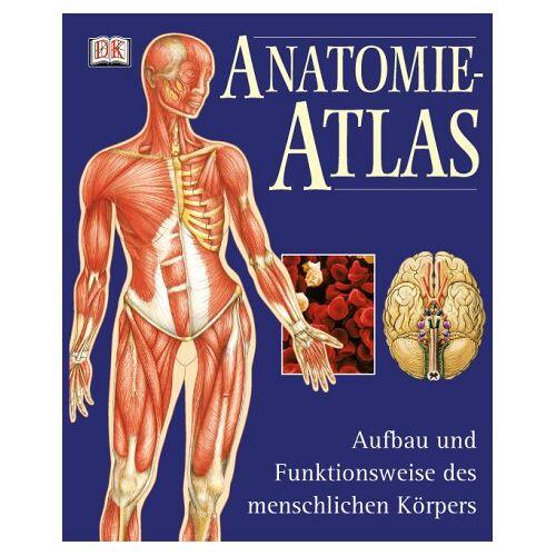 - Anatomie-Atlas. Aufbau und Funktionsweise des menschlichen Körpers - Preis vom 16.05.2021 04:43:40 h