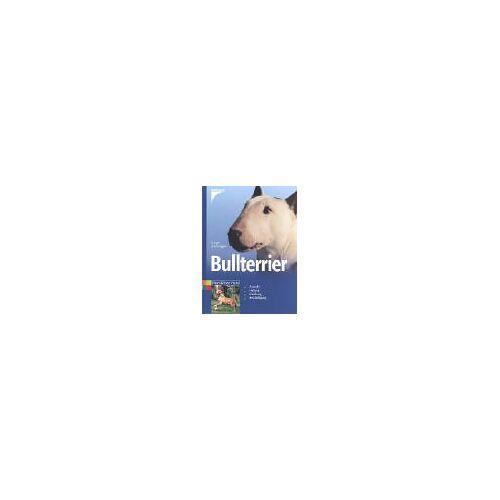 Dungen, Gregor von - Bullterrier - Preis vom 09.06.2021 04:47:15 h