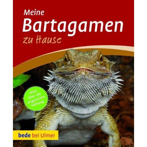Werner Preißer - Bartagamen zu Hause - Preis vom 13.10.2021 04:51:42 h