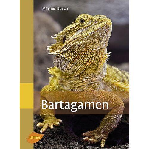 Marlies Busch - Bartagamen - Preis vom 13.10.2021 04:51:42 h