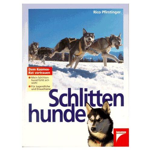 Rico Pfirstinger - Schlittenhunde - Preis vom 11.06.2021 04:46:58 h