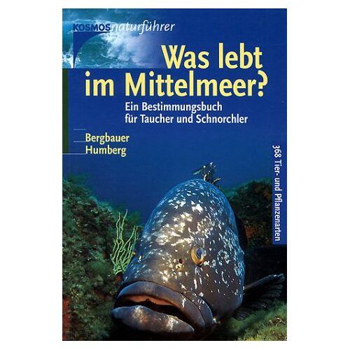 Matthias Bergbauer - Was lebt im Mittelmeer? - Preis vom 21.06.2021 04:48:19 h
