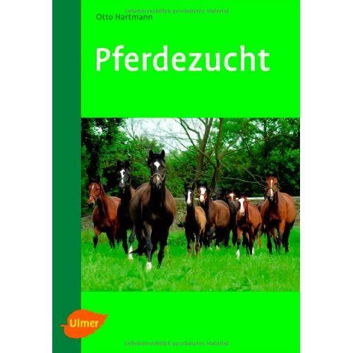 Otto Hartmann - Pferdezucht - Preis vom 21.06.2021 04:48:19 h
