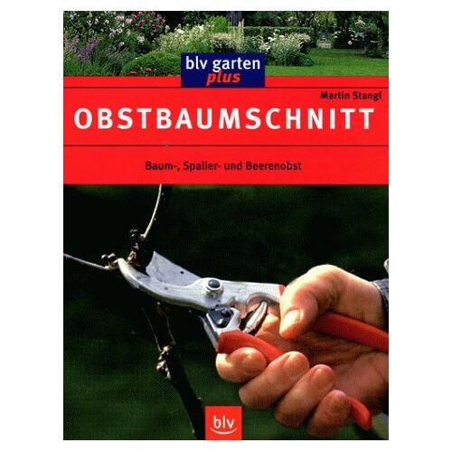 Martin Stangl - Obstbaumschnitt: Baum-, Spalier- und Beerenobst - Preis vom 17.06.2021 04:48:08 h