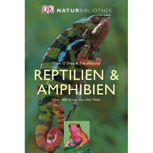Mark O'Shea - Reptilien und Amphibien - Preis vom 17.05.2021 04:44:08 h
