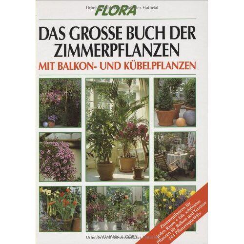 Johannes. Haller - Das große Buch der Zimmerpflanzen, Balkonpflanzen und Kübelpflanzen - Preis vom 22.07.2021 04:48:11 h