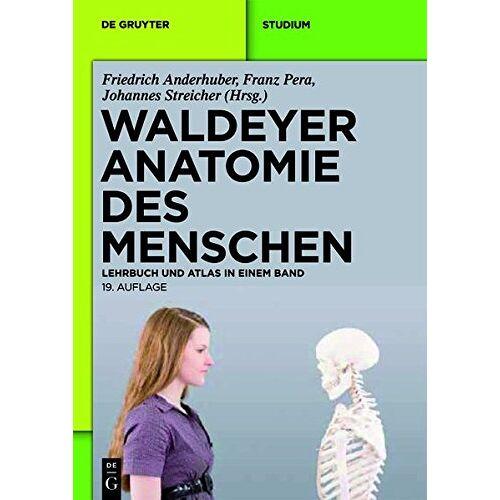 Anton Waldeyer - Waldeyer - Anatomie des Menschen: Lehrbuch und Atlas in einem Band (De Gruyter Studium) - Preis vom 09.06.2021 04:47:15 h
