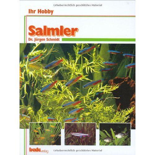 Dr. Jürgen Schmidt - Salmler, Ihr Hobby - Preis vom 16.05.2021 04:43:40 h