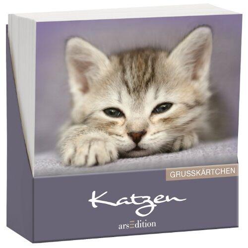 kein Autor - Katzen: Grußkärtchen (Glückskärtchen) - Preis vom 16.06.2021 04:47:02 h