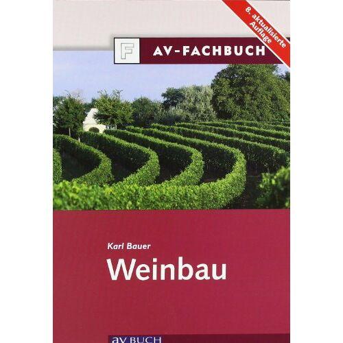 Karl Bauer - Weinbau - Preis vom 18.06.2021 04:47:54 h